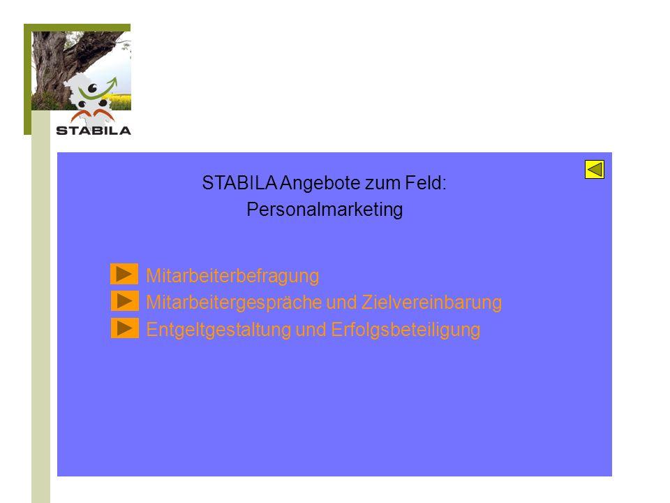 Kompetenzentwicklung und Wissensmanagement Personalentwicklung Lebensbegleitendes Lernen Wissenstransfer und Nachfolge Wissensnutzung im Geschäftsprozess STABILA Instrumente