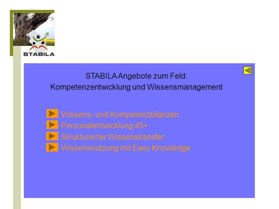 Erhalt und Förderung der Gesundheit Arbeitsfähigkeit Krankenstand und Erwerbsminderungen Ergonomie Alter(n)skritische Belastungsschwerpunkte Verhältnis- und Verhaltensprävention STABILA Instrumente