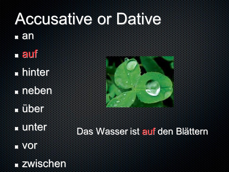 Accusative or Dative anaufhinternebenüberuntervorzwischen Das Wasser ist auf den Blättern