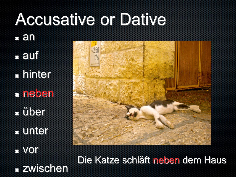 Accusative or Dative anaufhinternebenüberuntervorzwischen Die Katze schläft neben dem Haus