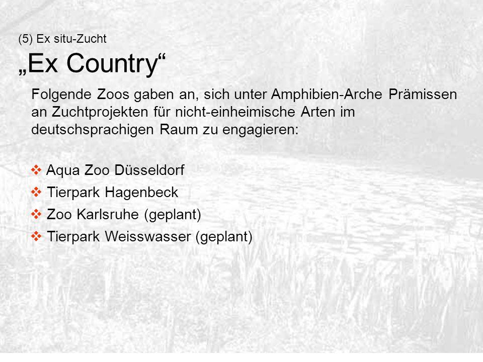 (5) Ex situ-Zucht Ex Country Folgende Zoos gaben an, sich unter Amphibien-Arche Prämissen an Zuchtprojekten für nicht-einheimische Arten im deutschspr