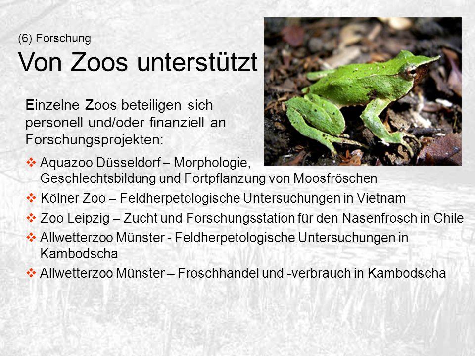 (6) Forschung Von Zoos unterstützt Einzelne Zoos beteiligen sich personell und/oder finanziell an Forschungsprojekten: Aquazoo Düsseldorf – Morphologi