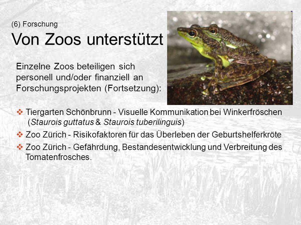 (6) Forschung Von Zoos unterstützt Einzelne Zoos beteiligen sich personell und/oder finanziell an Forschungsprojekten (Fortsetzung): Tiergarten Schönb