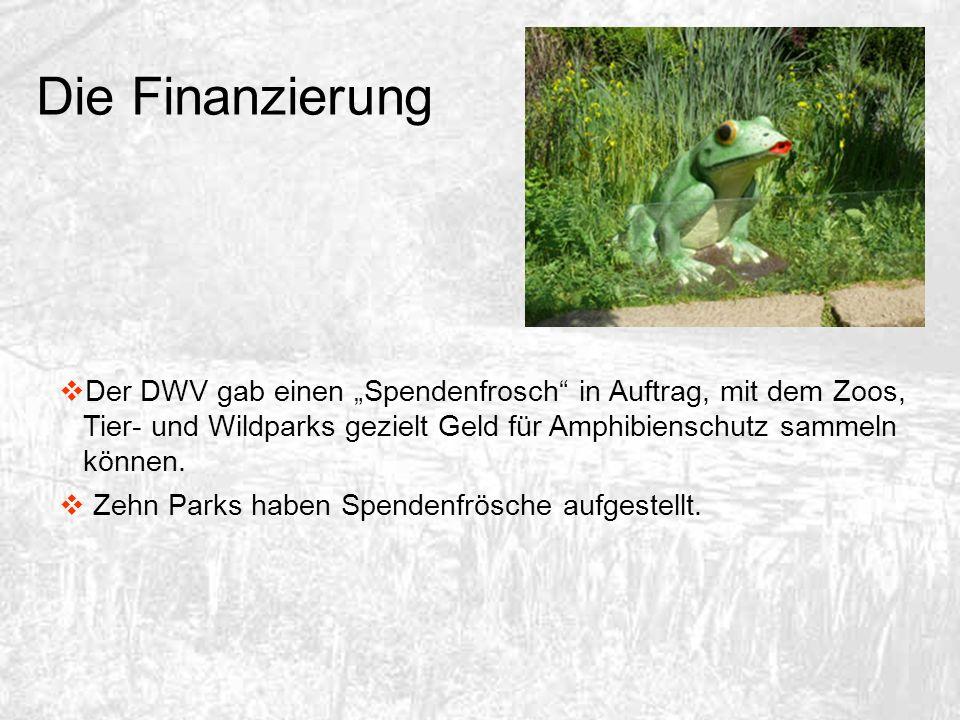 Der DWV gab einen Spendenfrosch in Auftrag, mit dem Zoos, Tier- und Wildparks gezielt Geld für Amphibienschutz sammeln können. Zehn Parks haben Spende