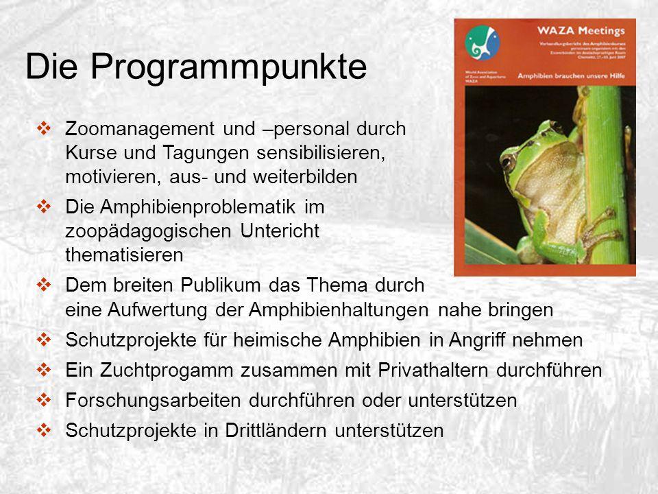 Die Programmpunkte Zoomanagement und –personal durch Kurse und Tagungen sensibilisieren, motivieren, aus- und weiterbilden Die Amphibienproblematik im