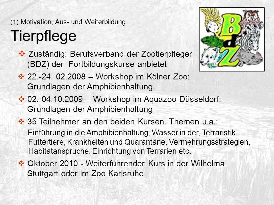 (1)Motivation, Aus- und Weiterbildung Tierpflege Zuständig: Berufsverband der Zootierpfleger (BDZ) der Fortbildungskurse anbietet 22.-24. 02.2008 – Wo