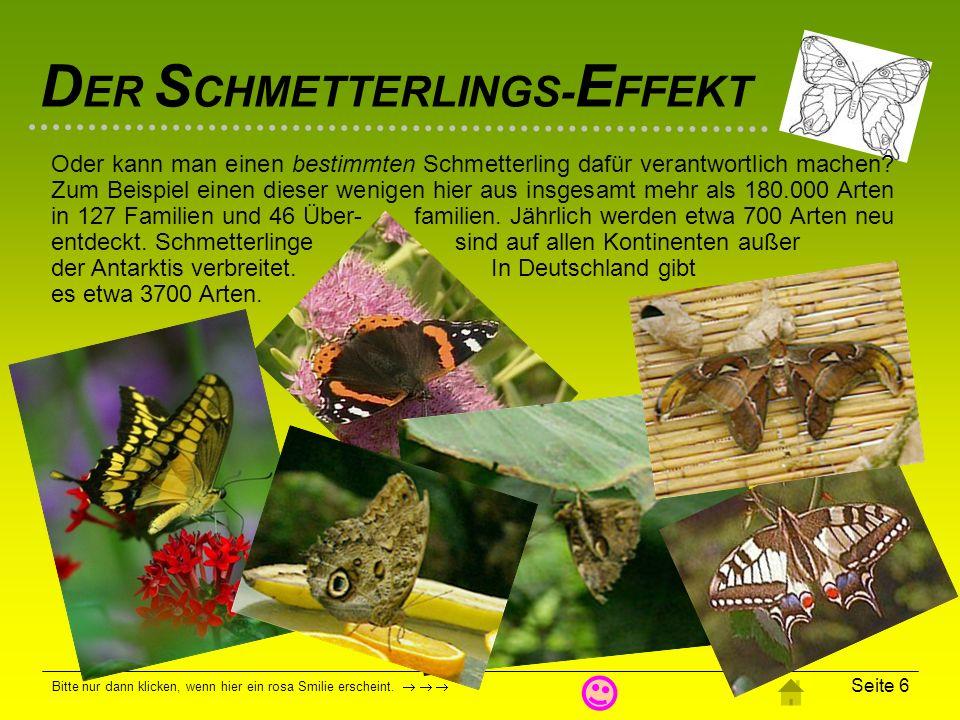 Ob die vielen Ansätze hier den Schmetterlings-Effekt wirklich stichhaltig nachweisen oder widerlegen können, sei dahinge- stellt.