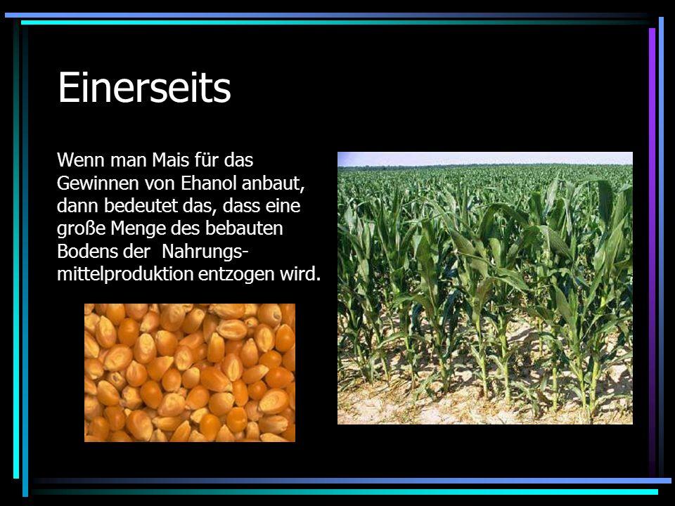 Einerseits Wenn man Mais für das Gewinnen von Ehanol anbaut, dann bedeutet das, dass eine große Menge des bebauten Bodens der Nahrungs- mittelprodukti