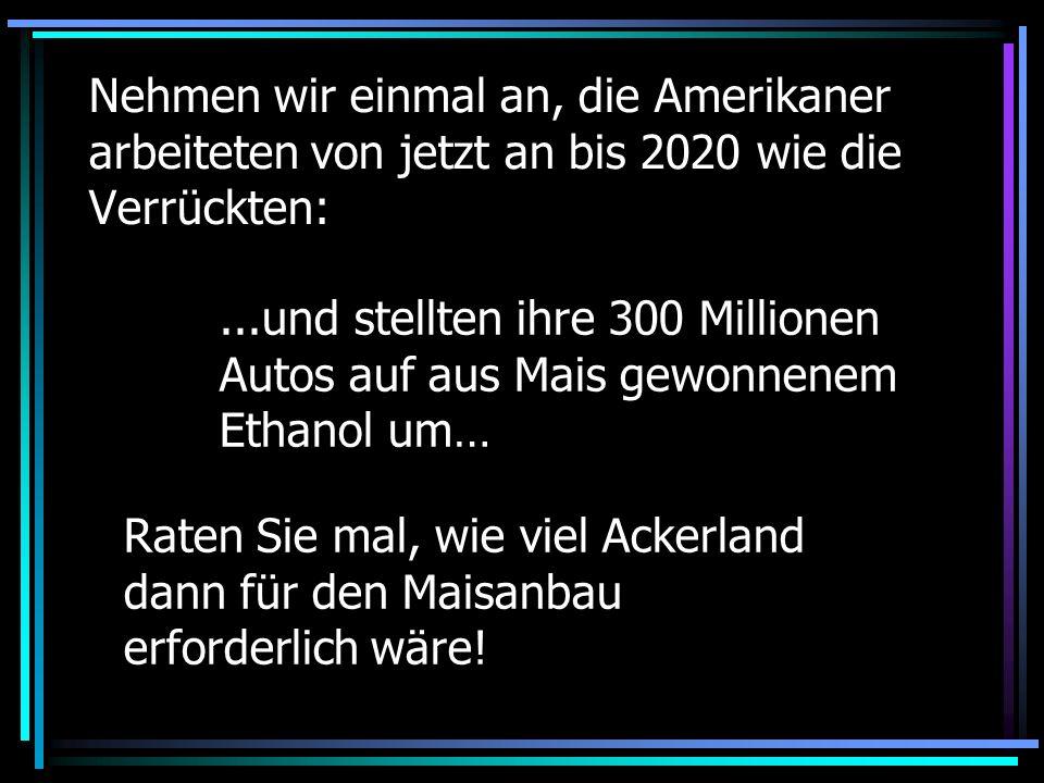 Nehmen wir einmal an, die Amerikaner arbeiteten von jetzt an bis 2020 wie die Verrückten:...und stellten ihre 300 Millionen Autos auf aus Mais gewonne