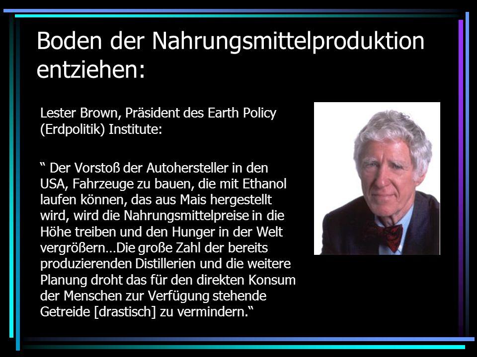 Boden der Nahrungsmittelproduktion entziehen: Lester Brown, Präsident des Earth Policy (Erdpolitik) Institute: Der Vorstoß der Autohersteller in den U