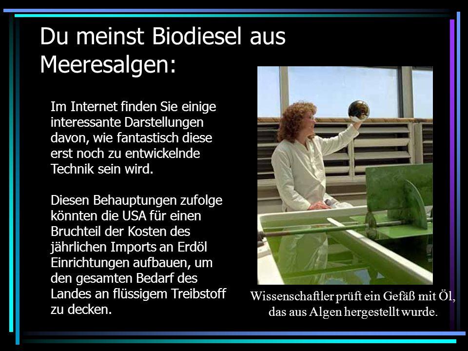 Du meinst Biodiesel aus Meeresalgen: Im Internet finden Sie einige interessante Darstellungen davon, wie fantastisch diese erst noch zu entwickelnde T