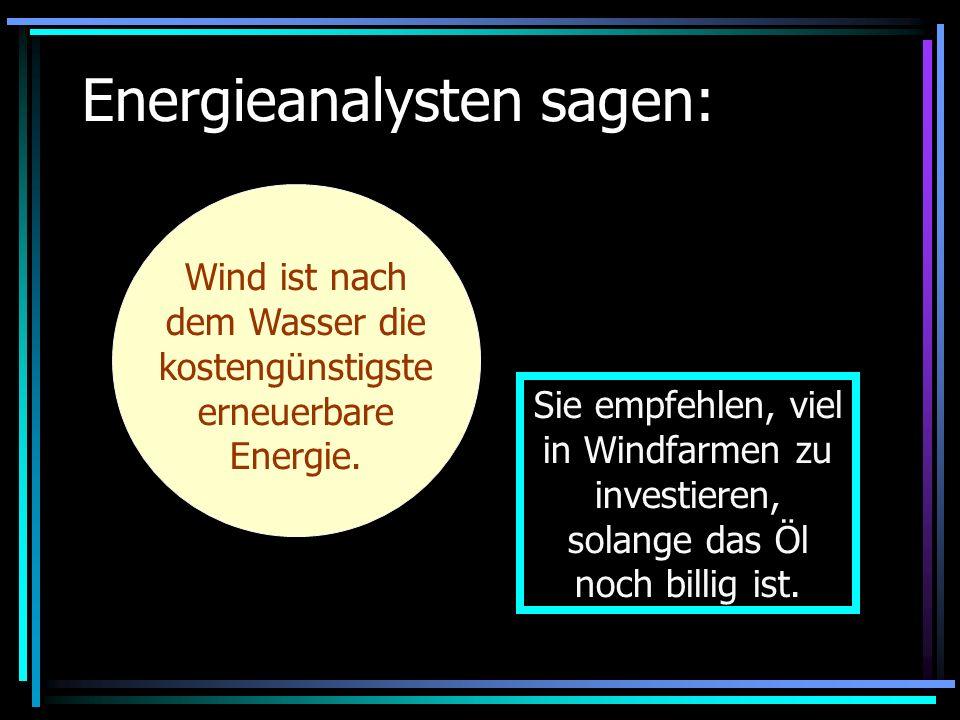 Energieanalysten sagen: Wind ist nach dem Wasser die kostengünstigste erneuerbare Energie. Sie empfehlen, viel in Windfarmen zu investieren, solange d