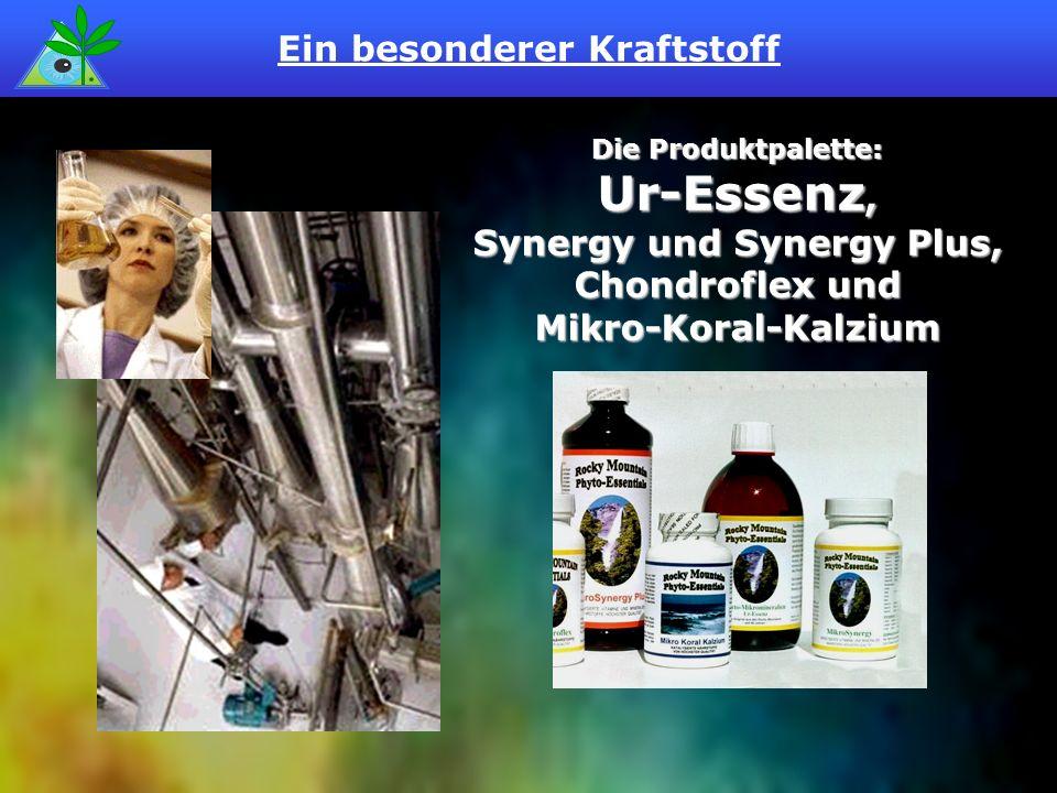 Ein besonderer Kraftstoff Die Produktpalette: Ur-Essenz, Synergy und Synergy Plus, Chondroflex und Mikro-Koral-Kalzium