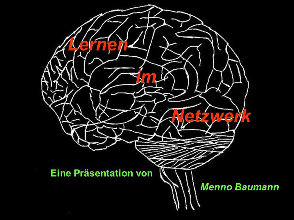 Inputschicht A neuronales Netzwerk Inputschicht B Die Abbildung zeigt ein stark systematisiertes, neuronales Netzwerk, anhand dessen einige zentrale Prinzipien des Lernens verdeutlicht werden sollen.