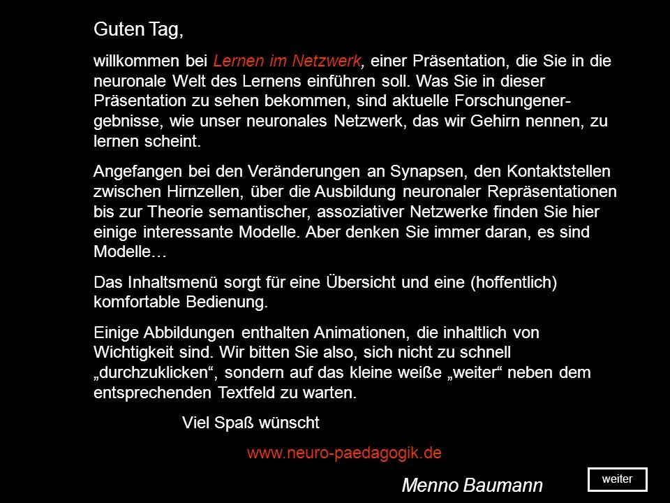 Lernen im Netzwerk Eine Präsentation von Menno Baumann