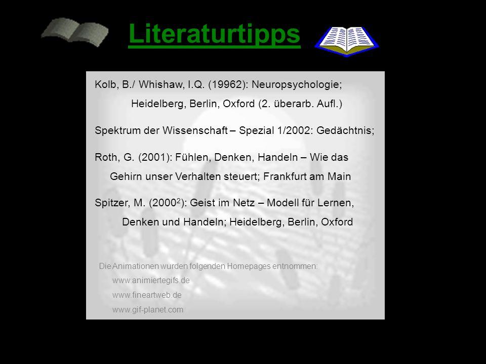 - Neuronale Repräsentationen Lernen im Netzwerk - Lernen an Synapsen - Neuromodulation - Semantische Netzwerke Inhalt: - Literaturtipps home