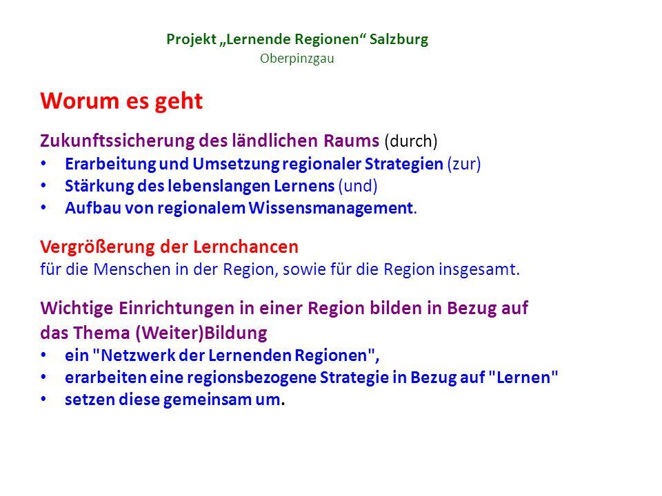 Projekt Lernende Regionen Salzburg Oberpinzgau Worum es geht Zukunftssicherung des ländlichen Raums (durch) Erarbeitung und Umsetzung regionaler Strategien (zur) Stärkung des lebenslangen Lernens (und) Aufbau von regionalem Wissensmanagement.
