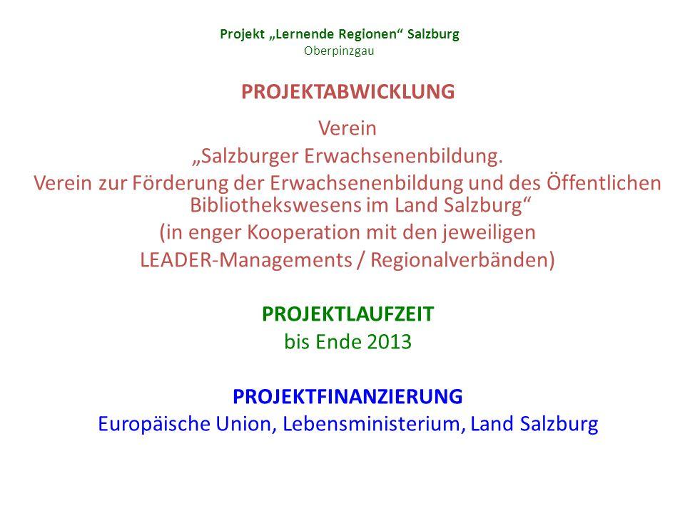 Projekt Lernende Regionen Salzburg Oberpinzgau PROJEKTABWICKLUNG Verein Salzburger Erwachsenenbildung.