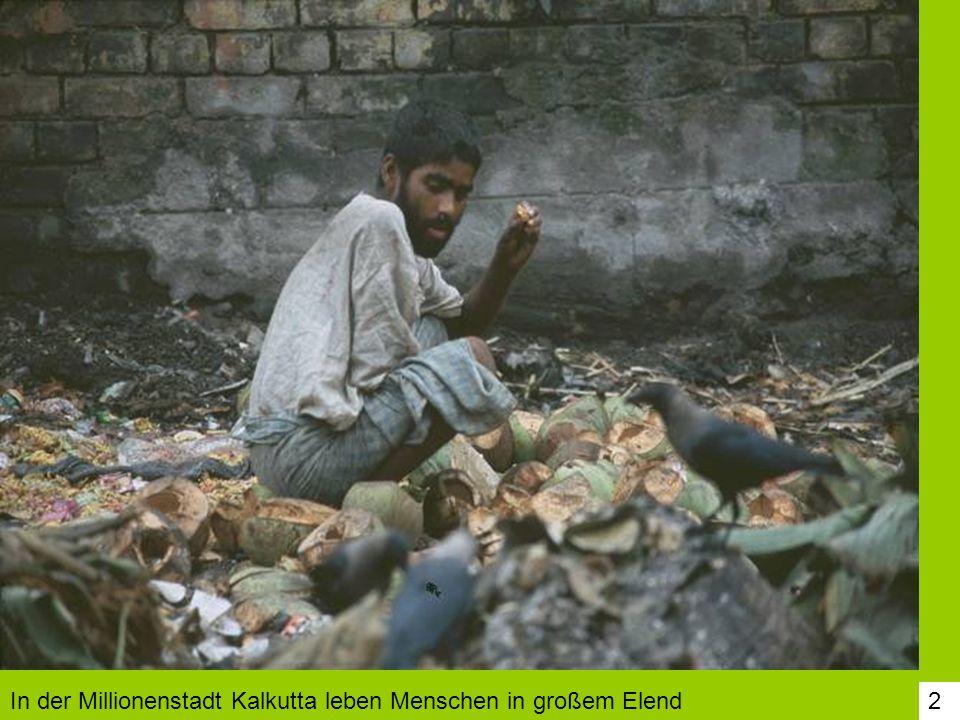 53 Die Kinder müssen beim Bepflanzen der Grundstücke alle mithelfen.