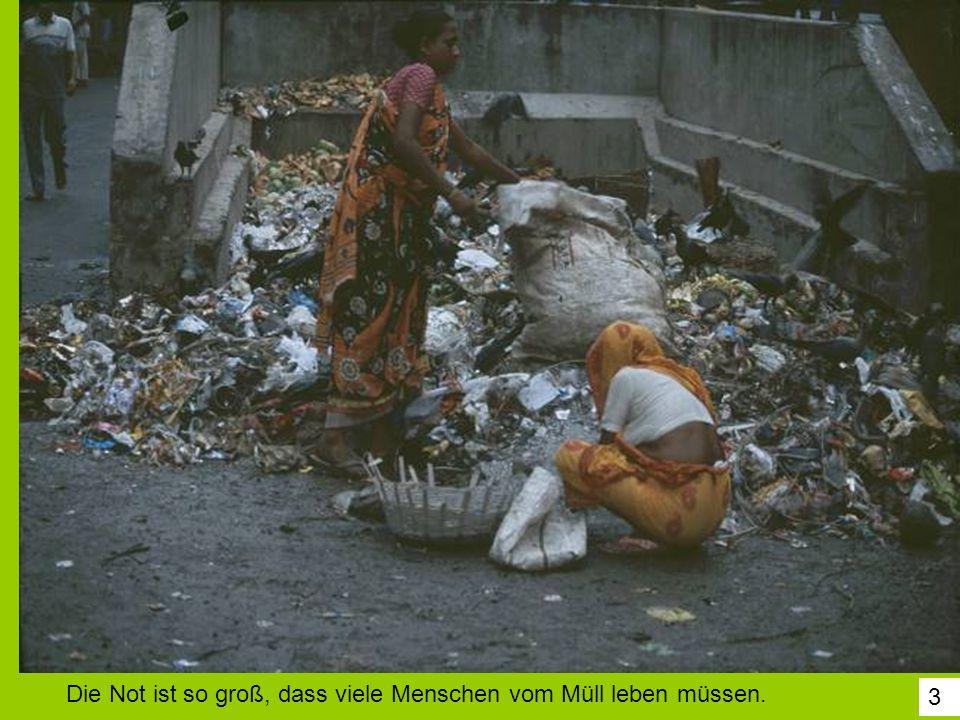 3 Die Not ist so groß, dass viele Menschen vom Müll leben müssen.