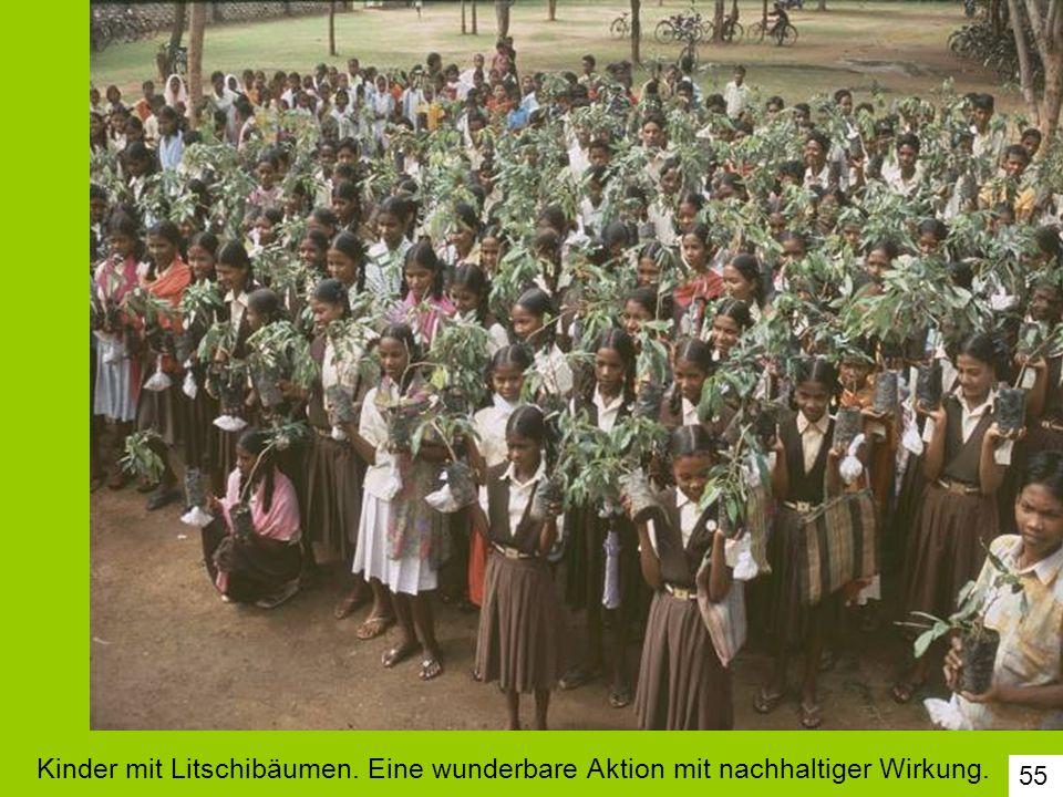 55 Kinder mit Litschibäumen. Eine wunderbare Aktion mit nachhaltiger Wirkung.