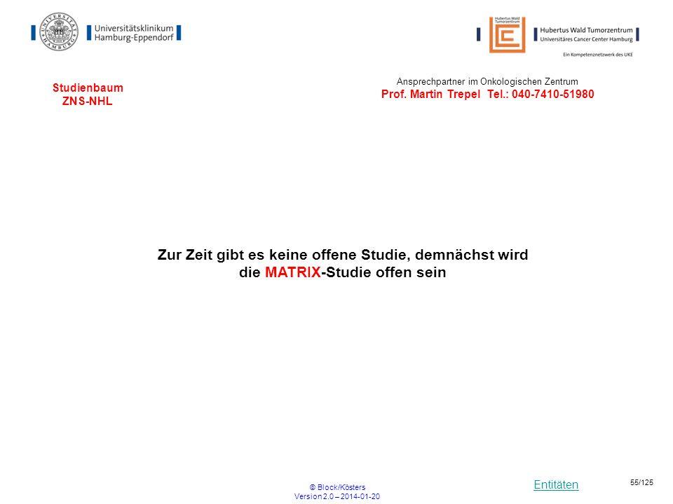 Entitäten © Block/Kösters Version 2.0 – 2014-01-20 55/125 Studienbaum ZNS-NHL Ansprechpartner im Onkologischen Zentrum Prof. Martin Trepel Tel.: 040-7