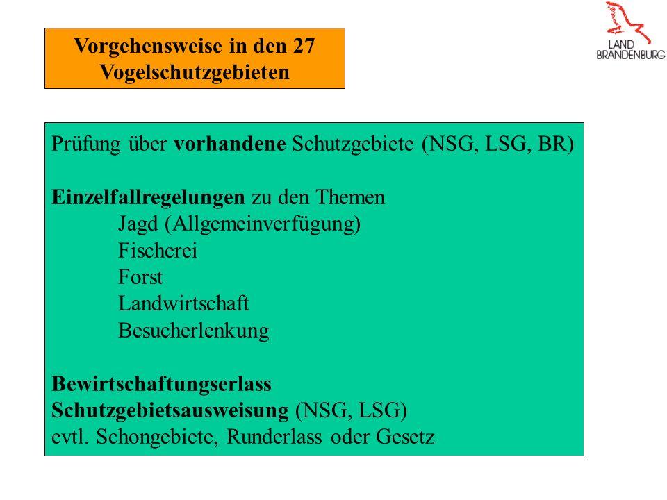 Vorgehensweise in den 27 Vogelschutzgebieten Prüfung über vorhandene Schutzgebiete (NSG, LSG, BR) Einzelfallregelungen zu den Themen Jagd (Allgemeinverfügung) Fischerei Forst Landwirtschaft Besucherlenkung Bewirtschaftungserlass Schutzgebietsausweisung (NSG, LSG) evtl.