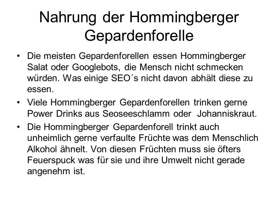 Nahrung der Hommingberger Gepardenforelle Die meisten Gepardenforellen essen Hommingberger Salat oder Googlebots, die Mensch nicht schmecken würden. W