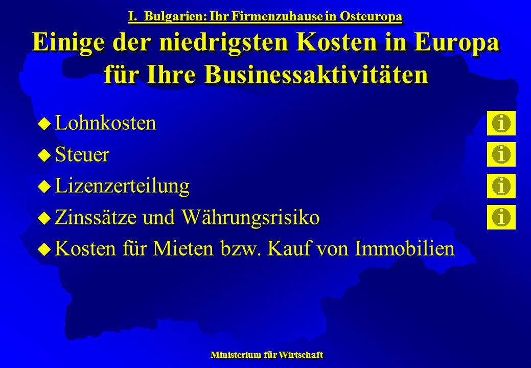 Ministerium für Wirtschaft Ministerium für Wirtschaft Lohnkosten Lohnkosten Steuer Steuer Lizenzerteilung Lizenzerteilung Zinssätze und Währungsrisiko