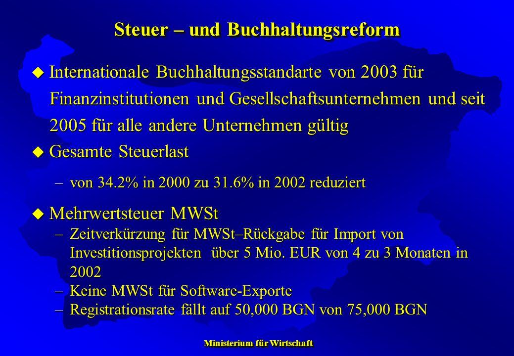 Ministerium für Wirtschaft Ministerium für Wirtschaft Steuer – und Buchhaltungsreform Internationale Buchhaltungsstandarte von 2003 für Internationale