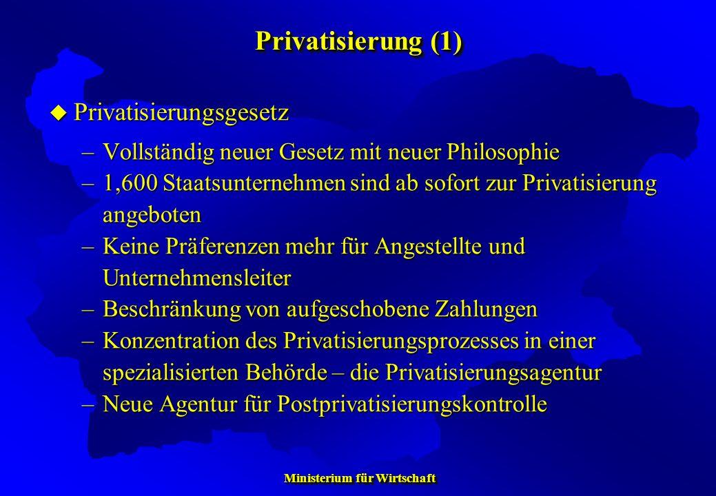 Ministerium für Wirtschaft Ministerium für Wirtschaft Privatisierungsgesetz Privatisierungsgesetz –Vollständig neuer Gesetz mit neuer Philosophie –1,6