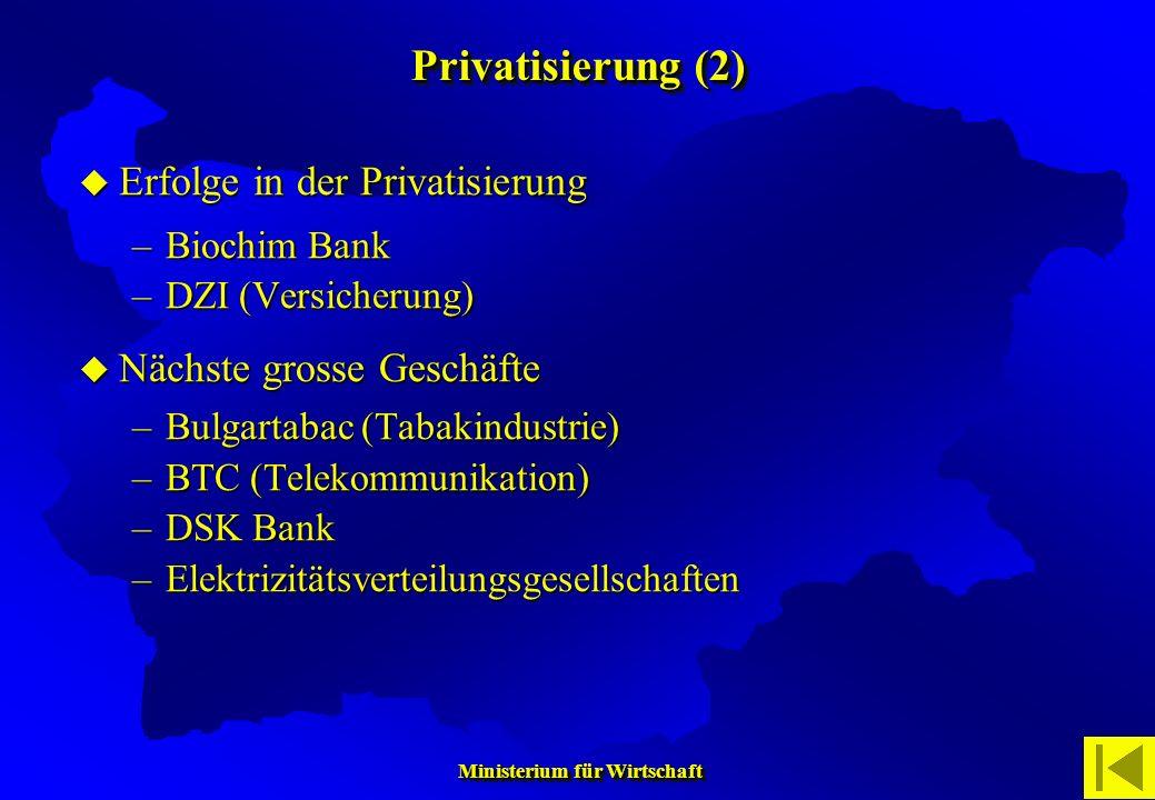 Ministerium für Wirtschaft Ministerium für Wirtschaft Erfolge in der Privatisierung Erfolge in der Privatisierung –Biochim Bank –DZI (Versicherung) Nä