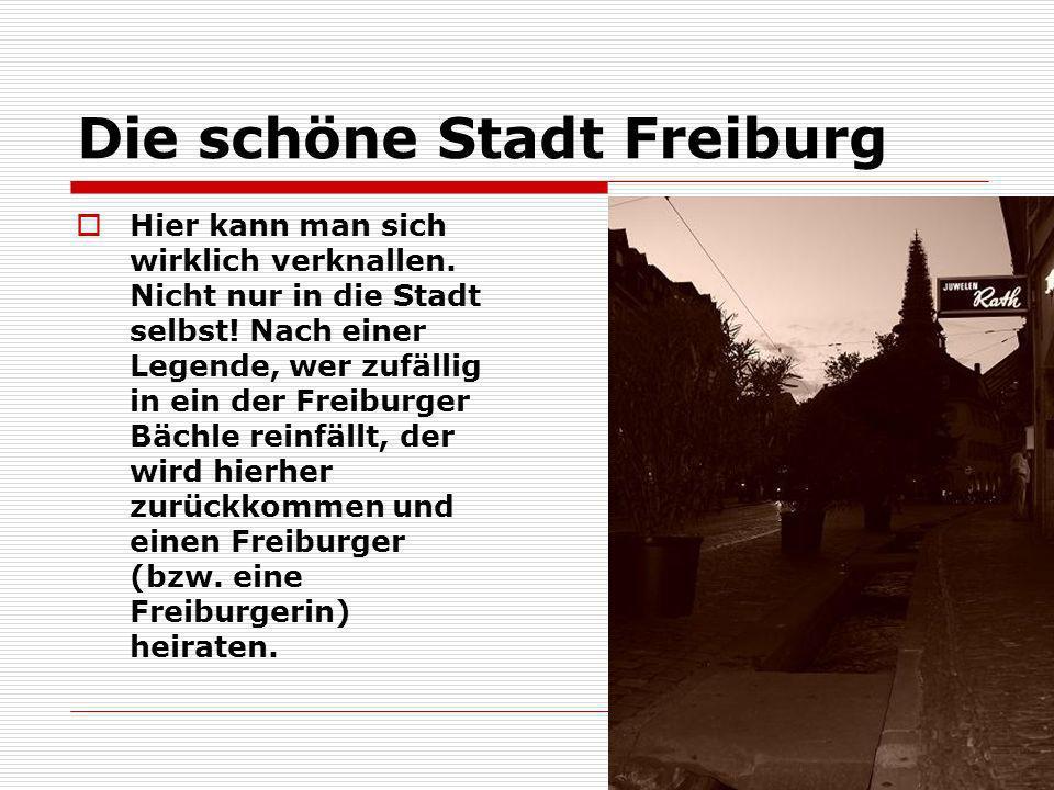 Die schöne Stadt Freiburg Hier kann man sich wirklich verknallen. Nicht nur in die Stadt selbst! Nach einer Legende, wer zufällig in ein der Freiburge