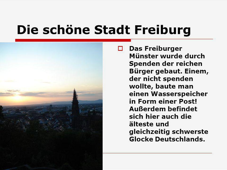 Die schöne Stadt Freiburg Das Freiburger Münster wurde durch Spenden der reichen Bürger gebaut. Einem, der nicht spenden wollte, baute man einen Wasse