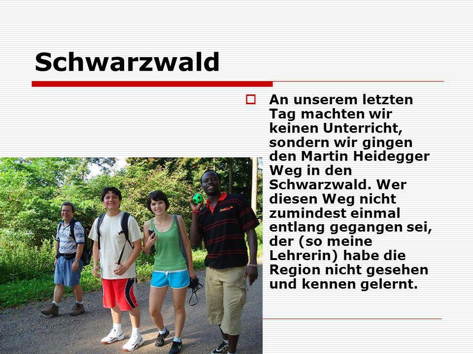 Schwarzwald An unserem letzten Tag machten wir keinen Unterricht, sondern wir gingen den Martin Heidegger Weg in den Schwarzwald. Wer diesen Weg nicht