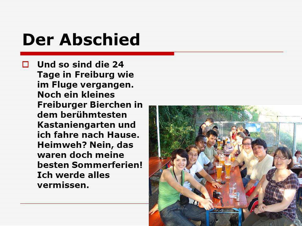 Der Abschied Und so sind die 24 Tage in Freiburg wie im Fluge vergangen. Noch ein kleines Freiburger Bierchen in dem berühmtesten Kastaniengarten und