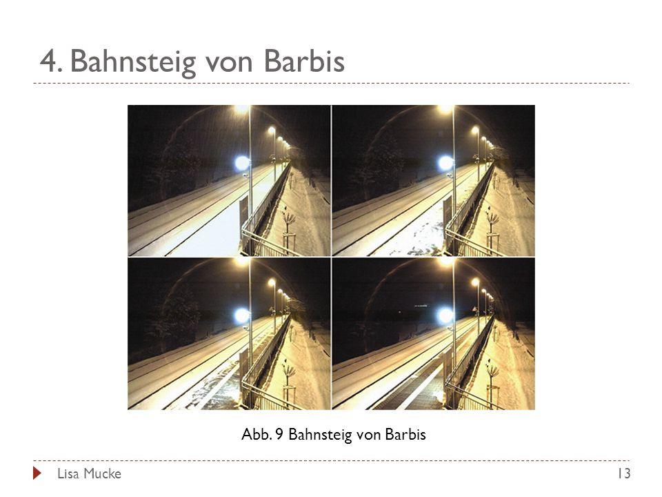 4. Bahnsteig von Barbis 13 Abb. 9 Bahnsteig von Barbis Lisa Mucke