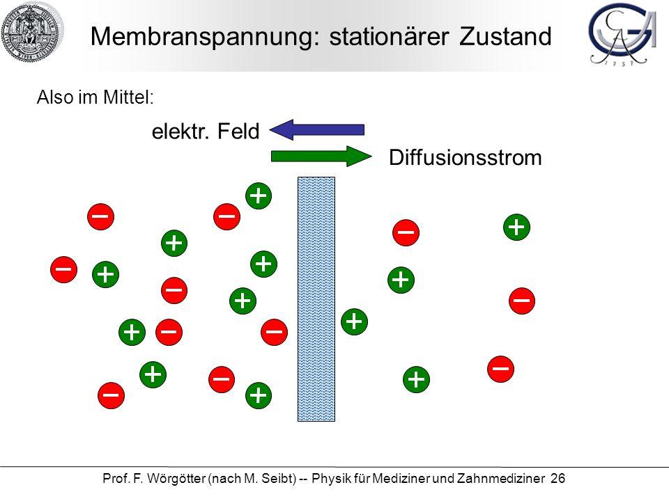 Prof. F. Wörgötter (nach M. Seibt) -- Physik für Mediziner und Zahnmediziner 26 Diffusionsstrom elektr. Feld Membranspannung: stationärer Zustand Also