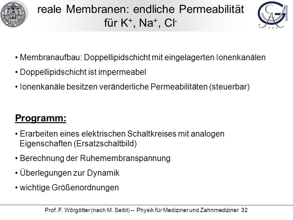 Prof. F. Wörgötter (nach M. Seibt) -- Physik für Mediziner und Zahnmediziner 32 reale Membranen: endliche Permeabilität für K +, Na +, Cl - Membranauf