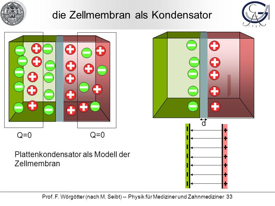 Prof. F. Wörgötter (nach M. Seibt) -- Physik für Mediziner und Zahnmediziner 33 die Zellmembran als Kondensator Q=0 Plattenkondensator als Modell der