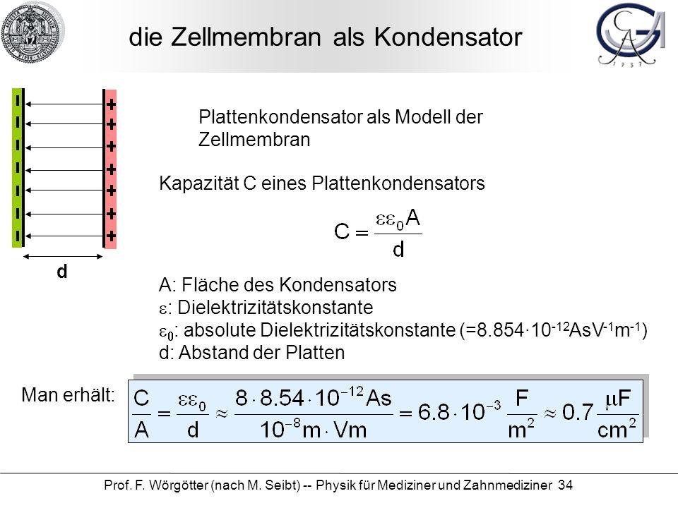 Prof. F. Wörgötter (nach M. Seibt) -- Physik für Mediziner und Zahnmediziner 34 die Zellmembran als Kondensator Plattenkondensator als Modell der Zell