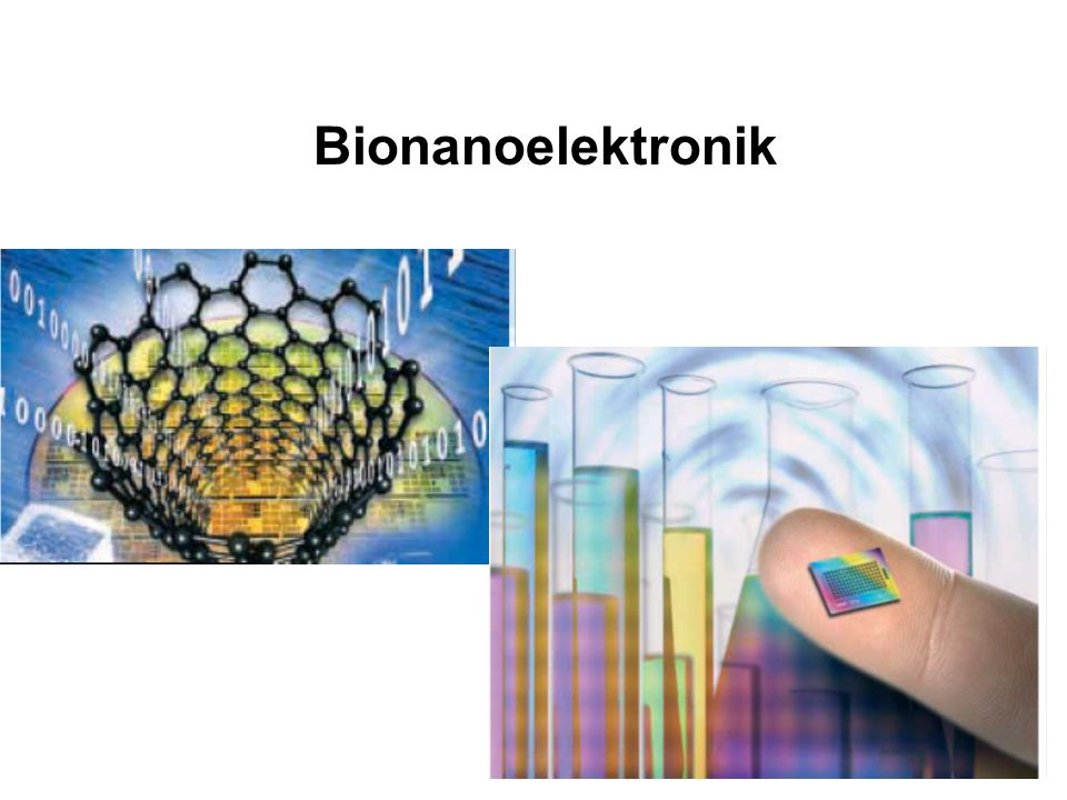 Biomolekulare Nanoschaltkreise DNA als Templatmaterial - Nanodrähte Vielfältige Möglichkeiten (mittels Enzymen) für Manipulation der DNA: Ligasen: verknüpfen Nucleinsäurestücke Endonucleasen: schneiden Nucleisäuren an spez.