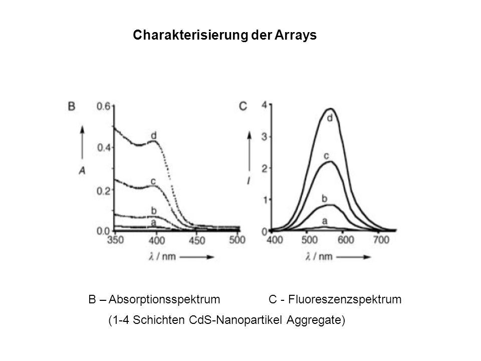 B – Absorptionsspektrum C - Fluoreszenzspektrum (1-4 Schichten CdS-Nanopartikel Aggregate) Charakterisierung der Arrays