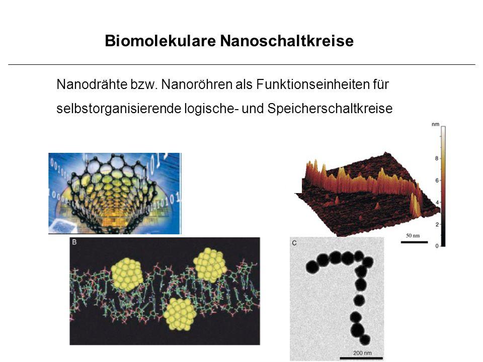 Biomolekulare Nanoschaltkreise Nanodrähte bzw. Nanoröhren als Funktionseinheiten für selbstorganisierende logische- und Speicherschaltkreise
