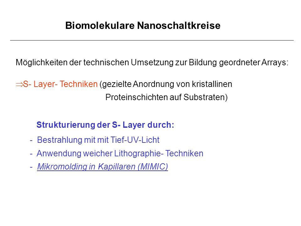 Biomolekulare Nanoschaltkreise Möglichkeiten der technischen Umsetzung zur Bildung geordneter Arrays: S- Layer- Techniken (gezielte Anordnung von kris