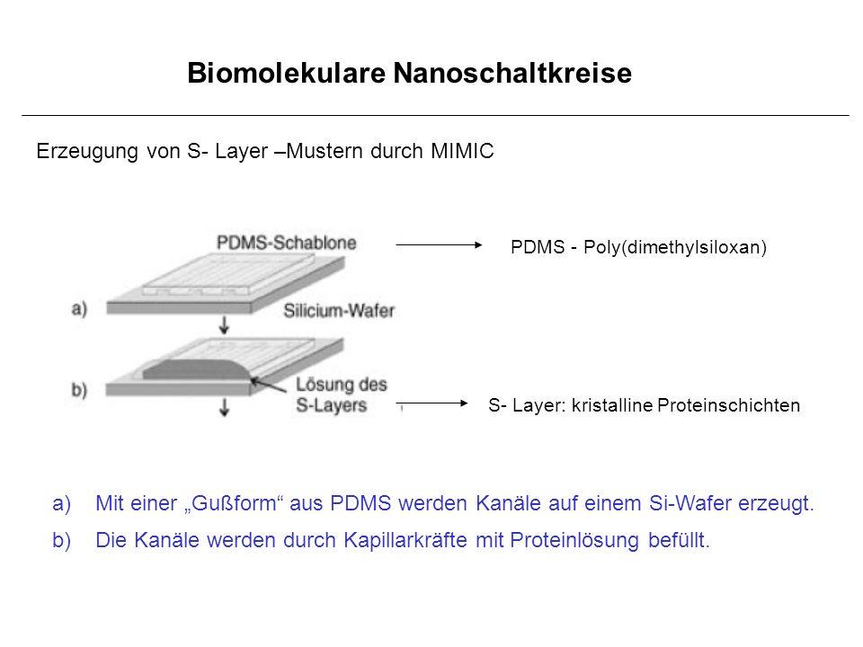 Biomolekulare Nanoschaltkreise PDMS - Poly(dimethylsiloxan) S- Layer: kristalline Proteinschichten a)Mit einer Gußform aus PDMS werden Kanäle auf eine