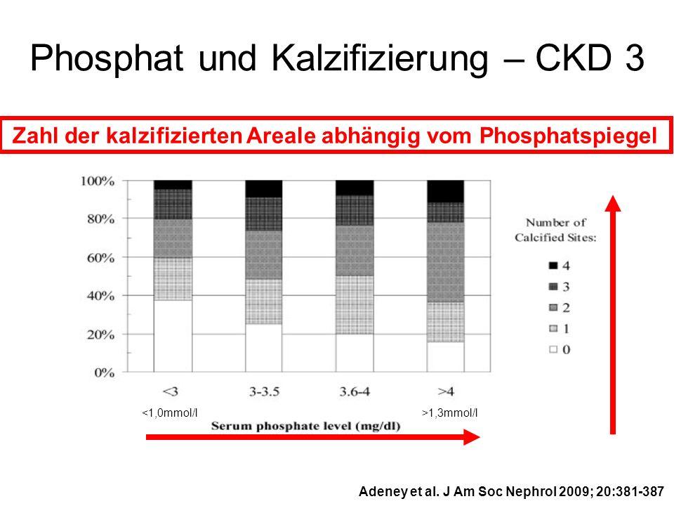 Phosphat und Kalzifizierung – CKD 3 Adeney et al. J Am Soc Nephrol 2009; 20:381-387 Zahl der kalzifizierten Areale abhängig vom Phosphatspiegel <1,0mm