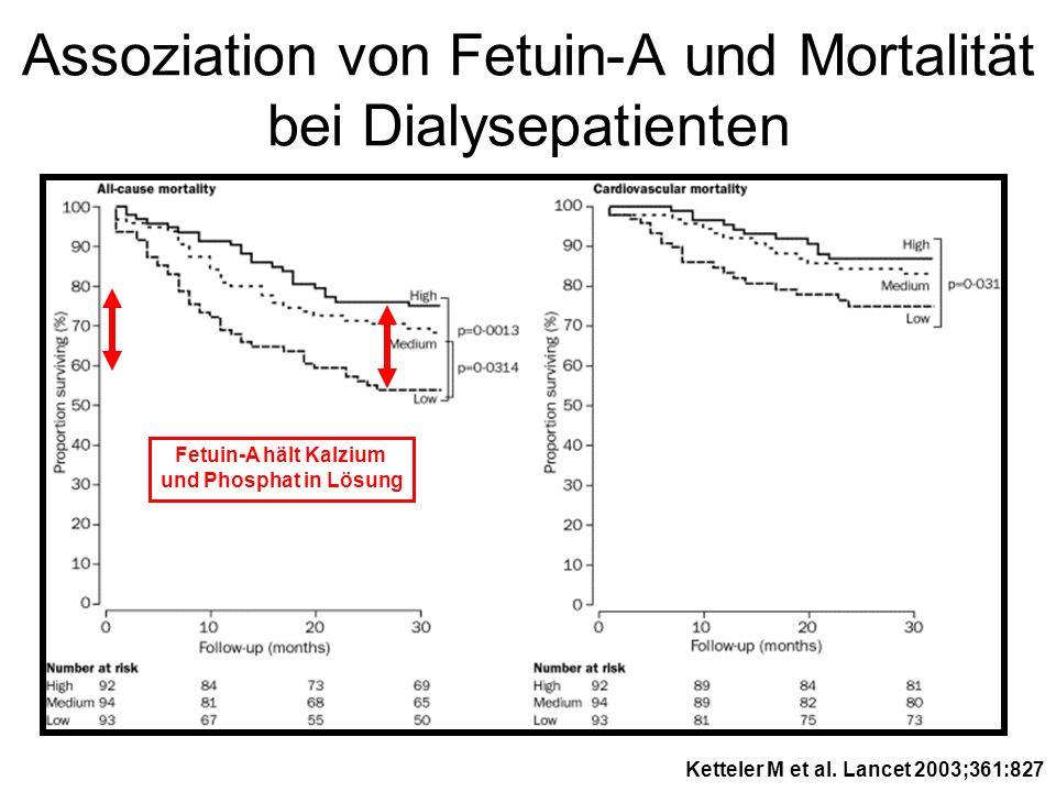 Assoziation von Fetuin-A und Mortalität bei Dialysepatienten Fetuin-A hält Kalzium und Phosphat in Lösung Ketteler M et al. Lancet 2003;361:827