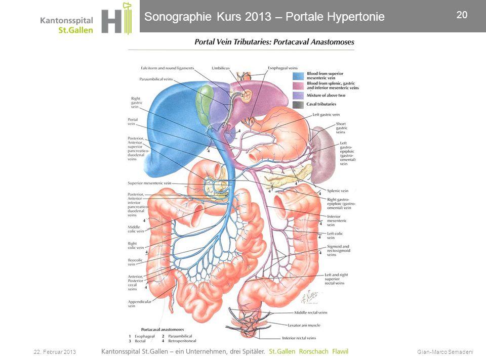 Sonographie Kurs 2013 – Portale Hypertonie 22. Februar 2013Gian-Marco Semadeni 20