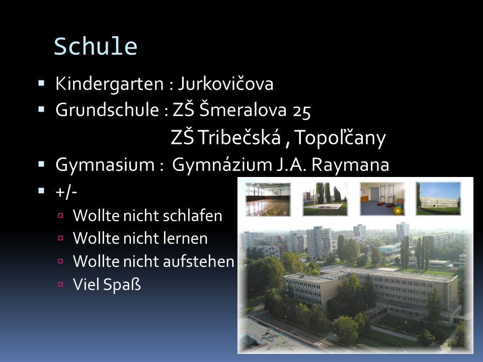 Schule Kindergarten : Jurkovičova Grundschule : ZŠ Šmeralova 25 ZŠ Tribečská, Topoľčany Gymnasium : Gymnázium J.A. Raymana +/- Wollte nicht schlafen W